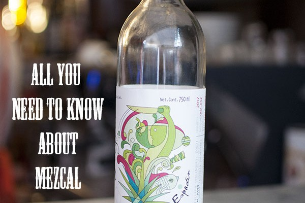 All you need to know about Mezcal - Mr and Mrs Moustache