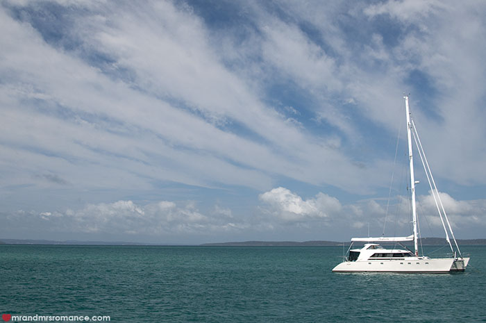 Mr and Mrs Romance - Whale watching - Hervey Bay Fraser Island
