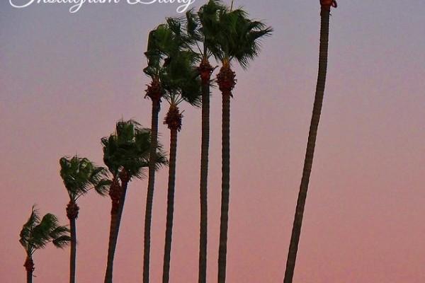 Mr & Mrs Romance - Insta Diary - 0HR1 moonlight in Cali