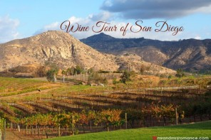 What to do in San Diego: wine and beer tours