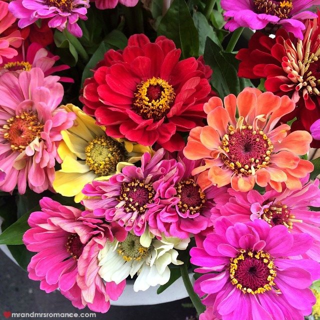 Mr & Mrs Romance - Insta Diary - 2aCB2 flowers