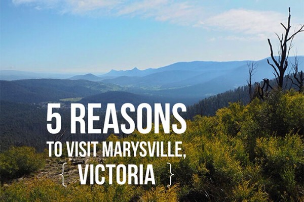 Mr and Mrs Romance - 5 reasons you must visit Marysville Victoria