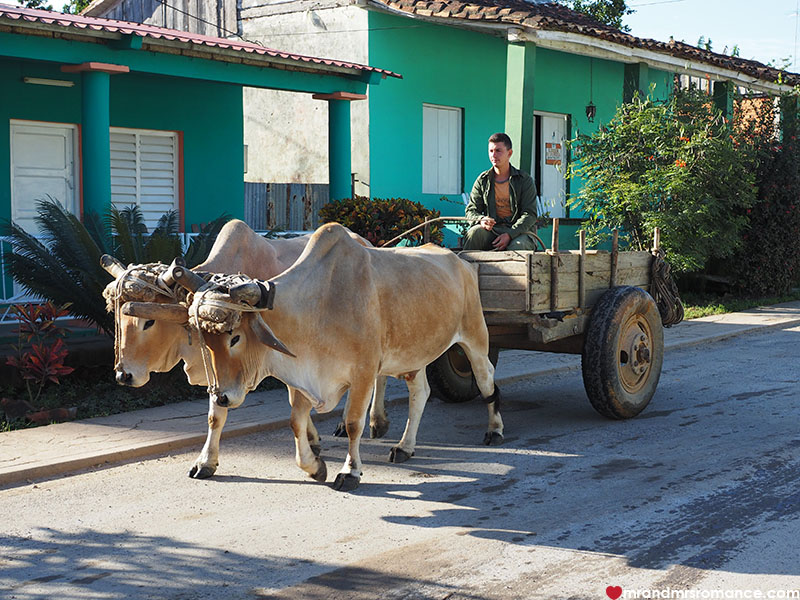 Mr & Mrs Romance - where to go in Cuba - Vinales transport