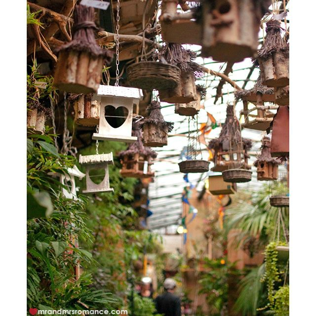Mr & Mrs Romance - Insta Diary - 57 Paris flower markets
