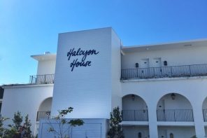 Paper Daisy at Halcyon House – those golden days are back to stay