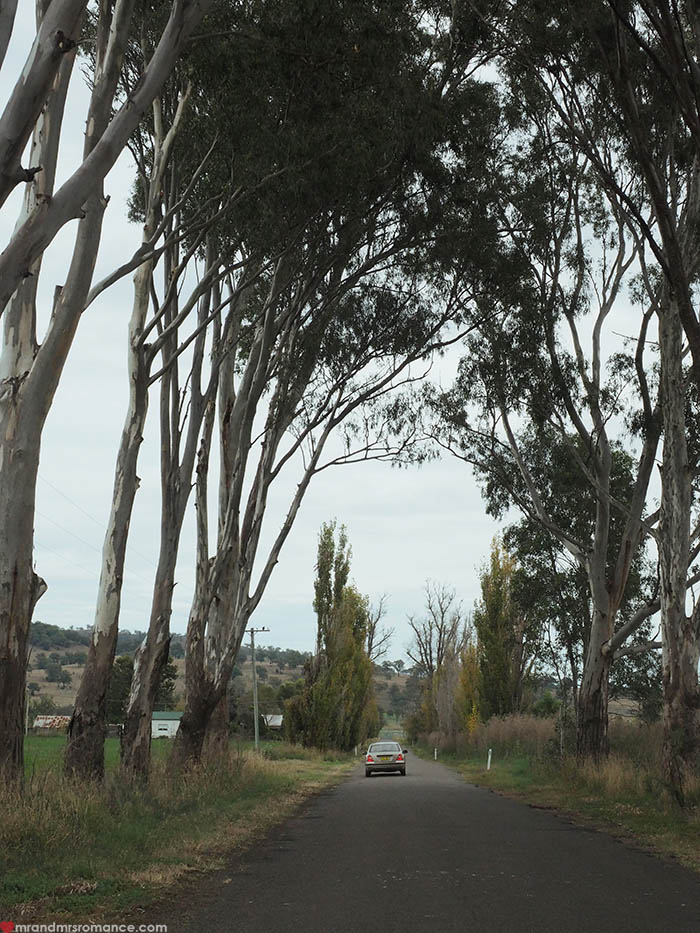 mr-and-mrs-romance-guide-to-scone-nsw-24