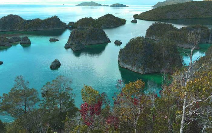 Contented Traveller - Raja Ampat West Papua