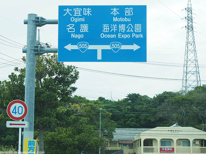 Mr and Mrs Romance - how to drive in Japan - roadsign