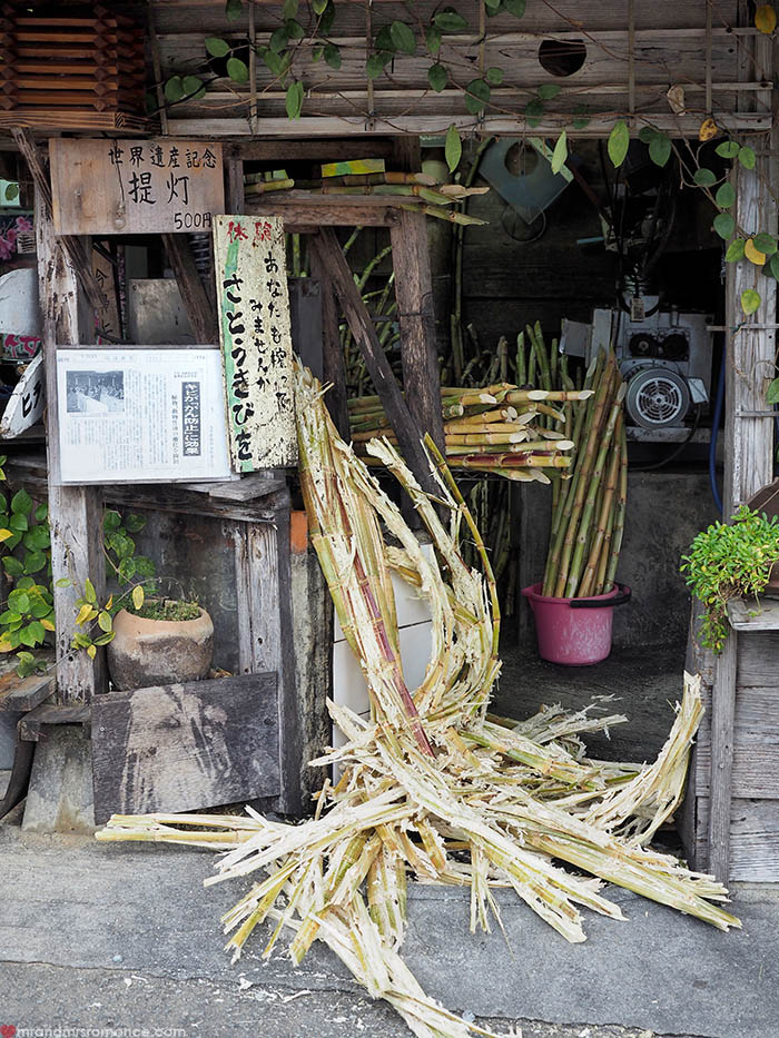 Mr and Mrs Romance - Postcards from Okinawa Japan - sugarcane
