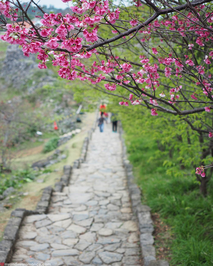 Mr and Mrs Romance - Postcards from Okinawa Japan - Nago Castle sakura