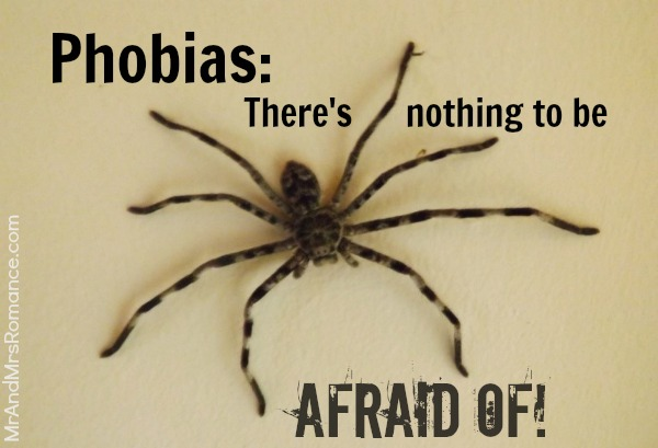 Phobia spider scared hairy