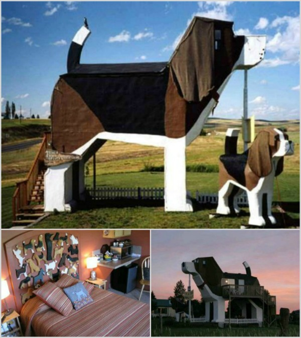 Mr and Mrs Romance - travel - Dog Bark Park Inn collage