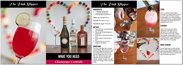 Cocktail party ebook sample - the Pink Slipper