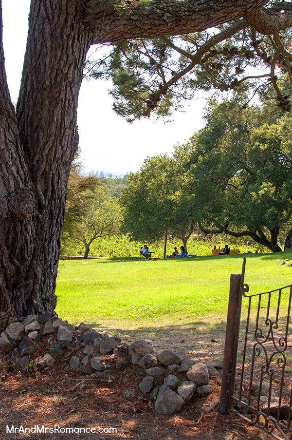 Mr & Mrs Romance - Sonoma - 10 picnic setting