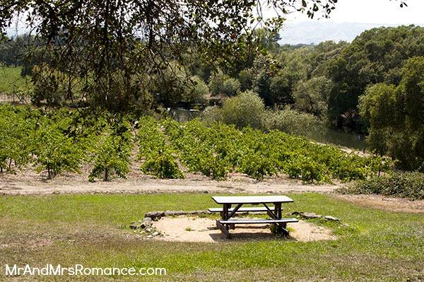 Mr & Mrs Romance - Sonoma - 11 picnic table