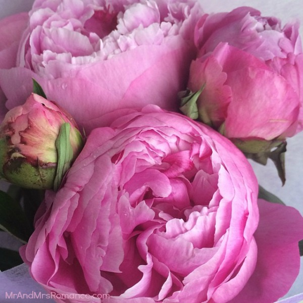 Mr & Mrs Romance - Insta Diary - HR3 peonies for Mrs R