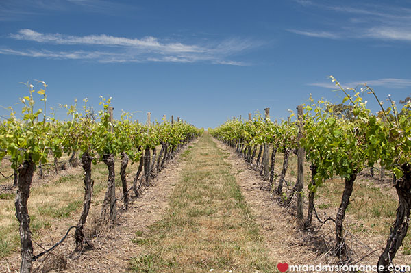 Best wineries to visit in Orange NSW - @MrandMrsRomance