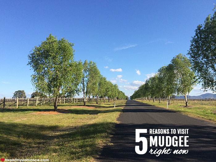 Mr and Mrs Romance - 5 reasons to visit Mudgee NSW right now copy
