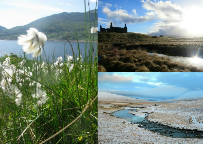 Corrour Station collage 2