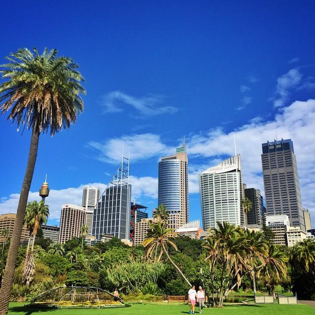Mr & Mrs Romance - Insta Diary - 8 Sydney Botanic Gardens