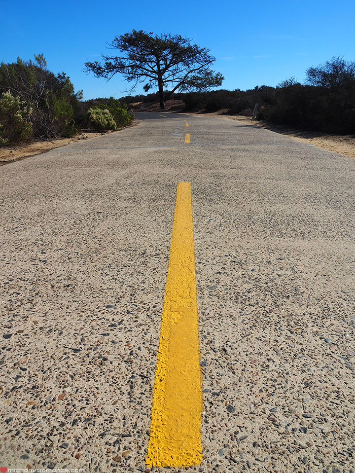 Mr-and-Mrs-Romance-Hiking-in-Torrey-Pines-San-Diego-5-the-road-in.jpg