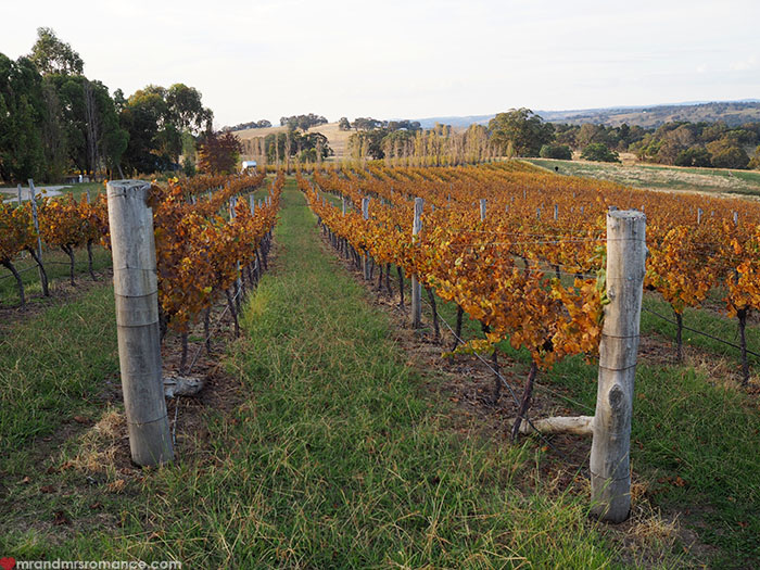 Mr & Mrs Romance - best wineries in Orange NSW