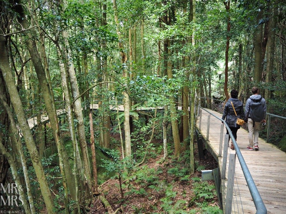 Blue Mountains Scenic Walkway