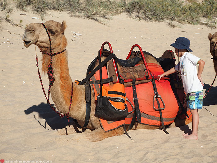 Mr & Mrs Romance - Broome on a Budget - Child with camels