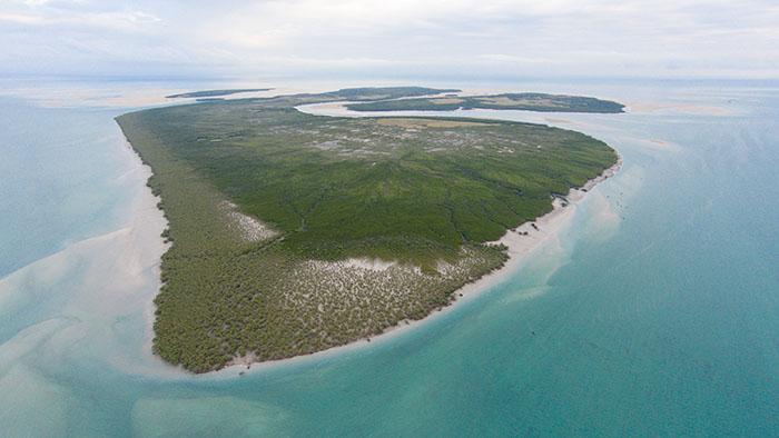 Montgomery Reef Australia by Adam Cropp