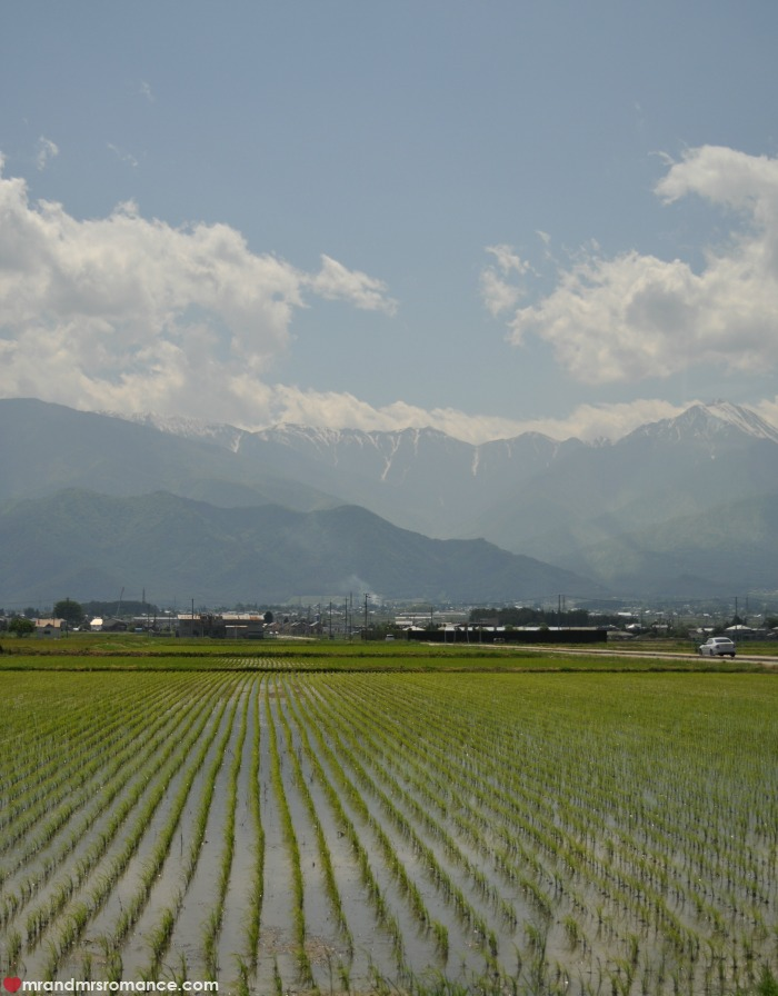 Mr & Mrs Romance - Japan escape - 3 paddy fields