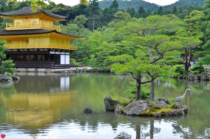 Mr & Mrs Romance - Kyoto temples - 5 Kinkaku ji