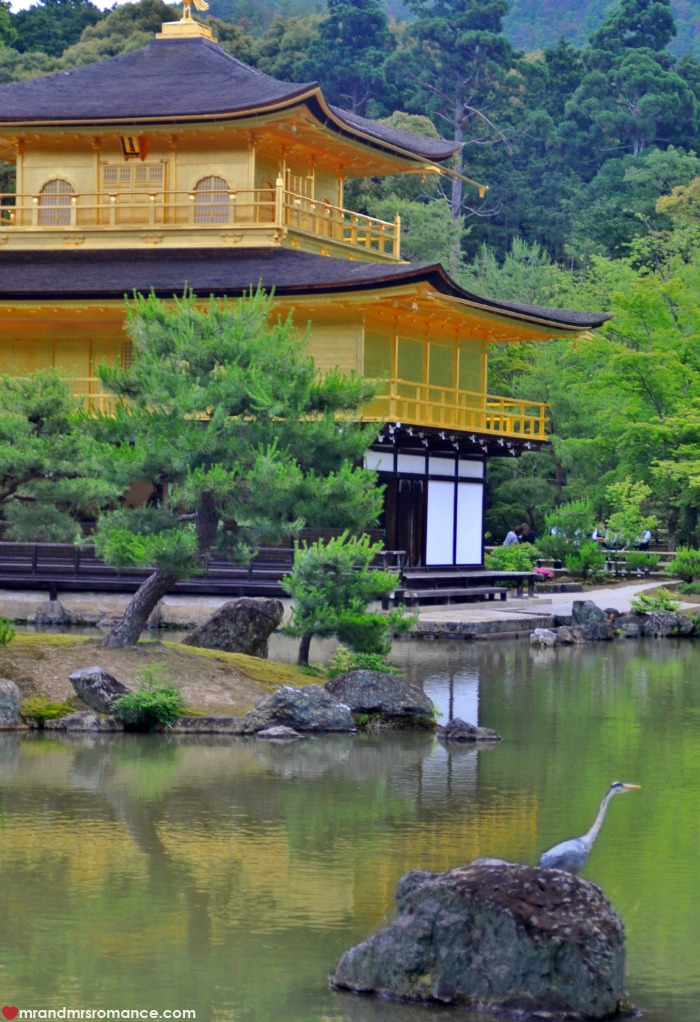 Mr & Mrs Romance - Kyoto temples - 6 Kinkaku ji
