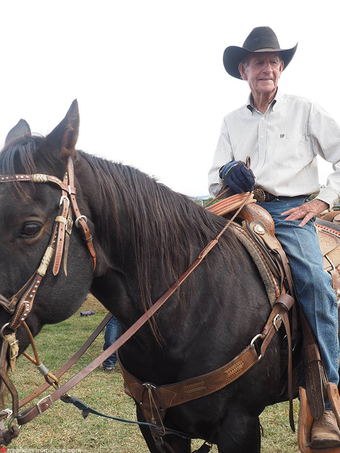 Mr & Mrs Romance – Scone Horse Festival - Bob Hodler