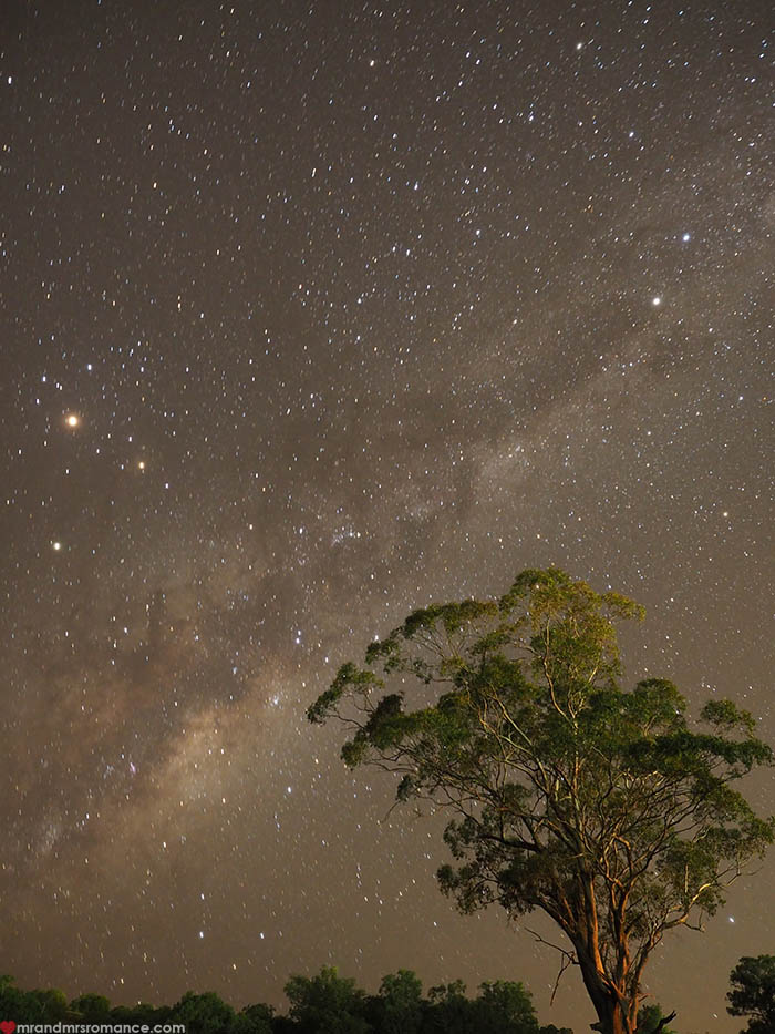 Mr & Mrs Romance – Scone Horse Festival - night sky