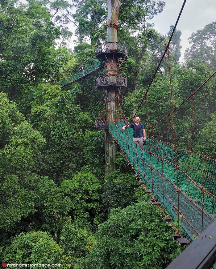 Mr & Mrs Romance - IG Edition Sabah - 14 canopy walk Danum