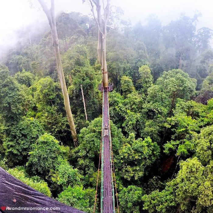 Mr & Mrs Romance - IG Edition Sabah - 16 canopy walk Danum Valley