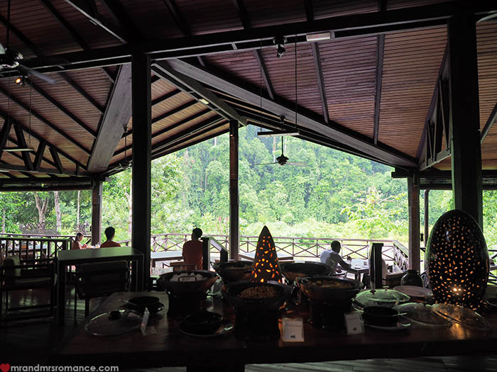 Mr and Mrs Romance - Why you should visit Danum Valley Sabah Borneo