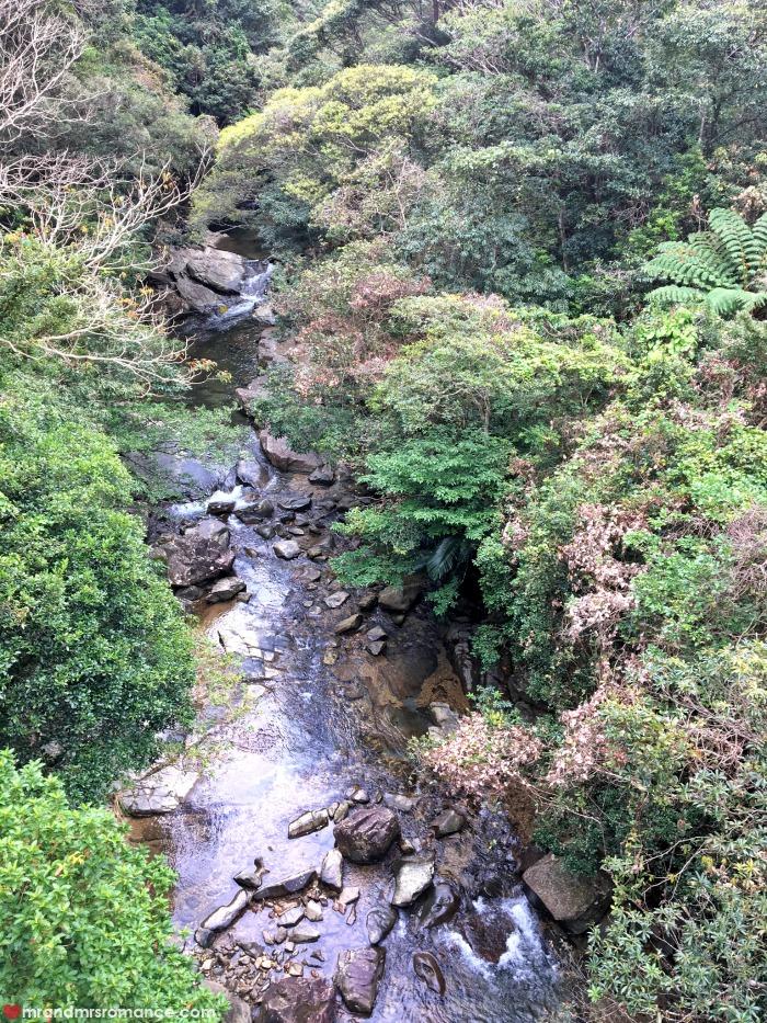 Mr & Mrs Romance - IG Edition - 9c view of Kunigami Park