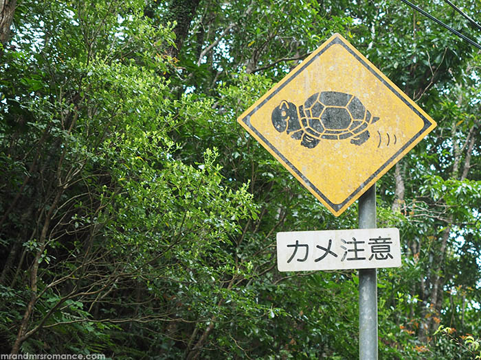 Mr and Mrs Romance - how to drive in Japan - cute sign