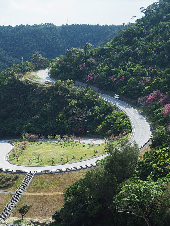 Mr and Mrs Romance - how to drive in Japan - great road portrait