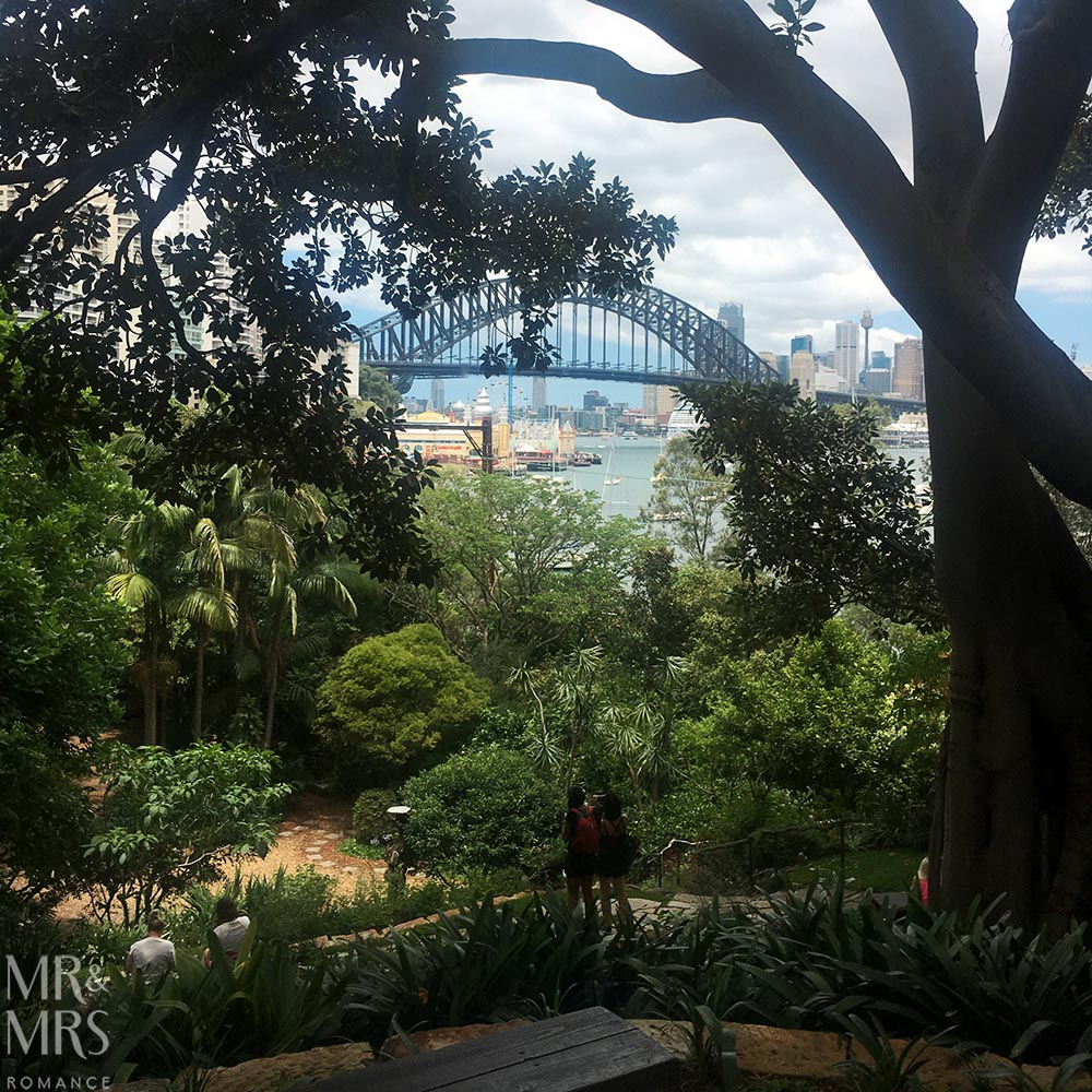 Wandering in Wendy Whitely's gardens Sydney
