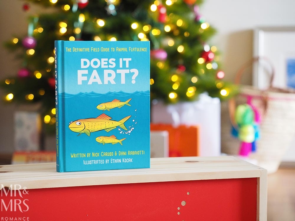 Holiday book guide for guys - books for men - does it fart?