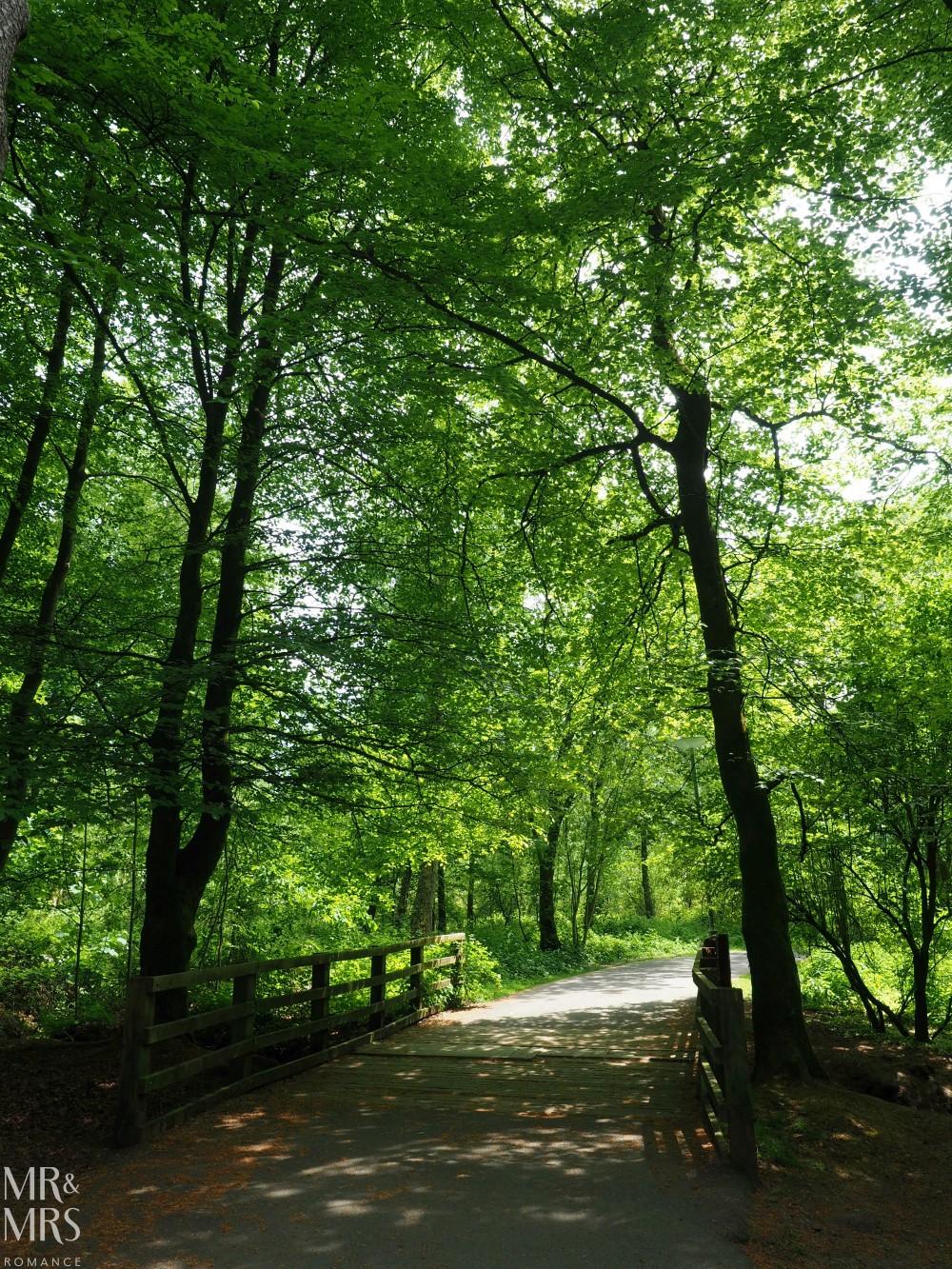 Loch Lomond without a car - Mr & Mrs Romance - parklands
