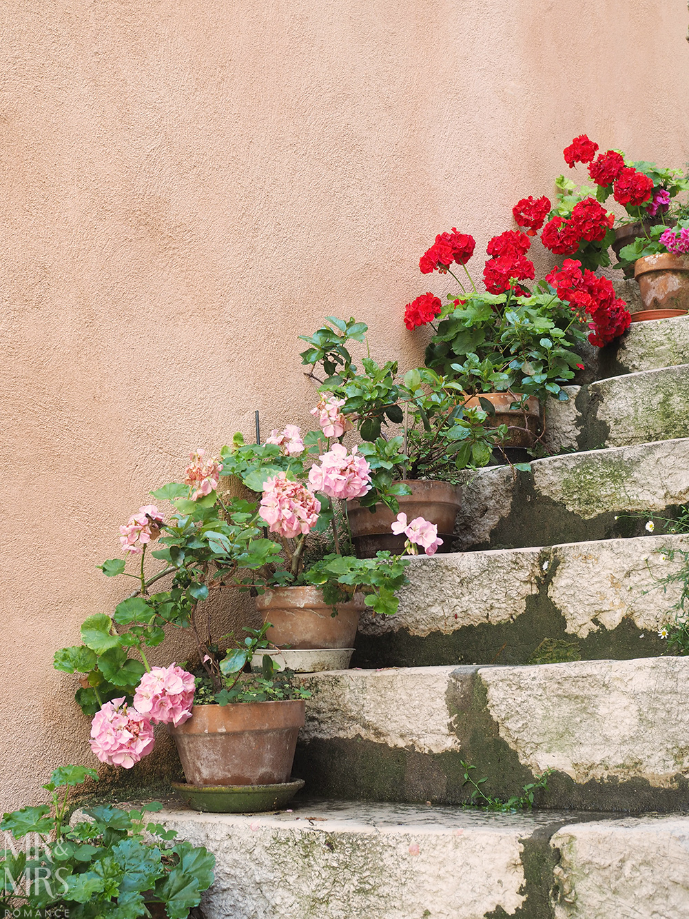potted flowers in Gorbio France