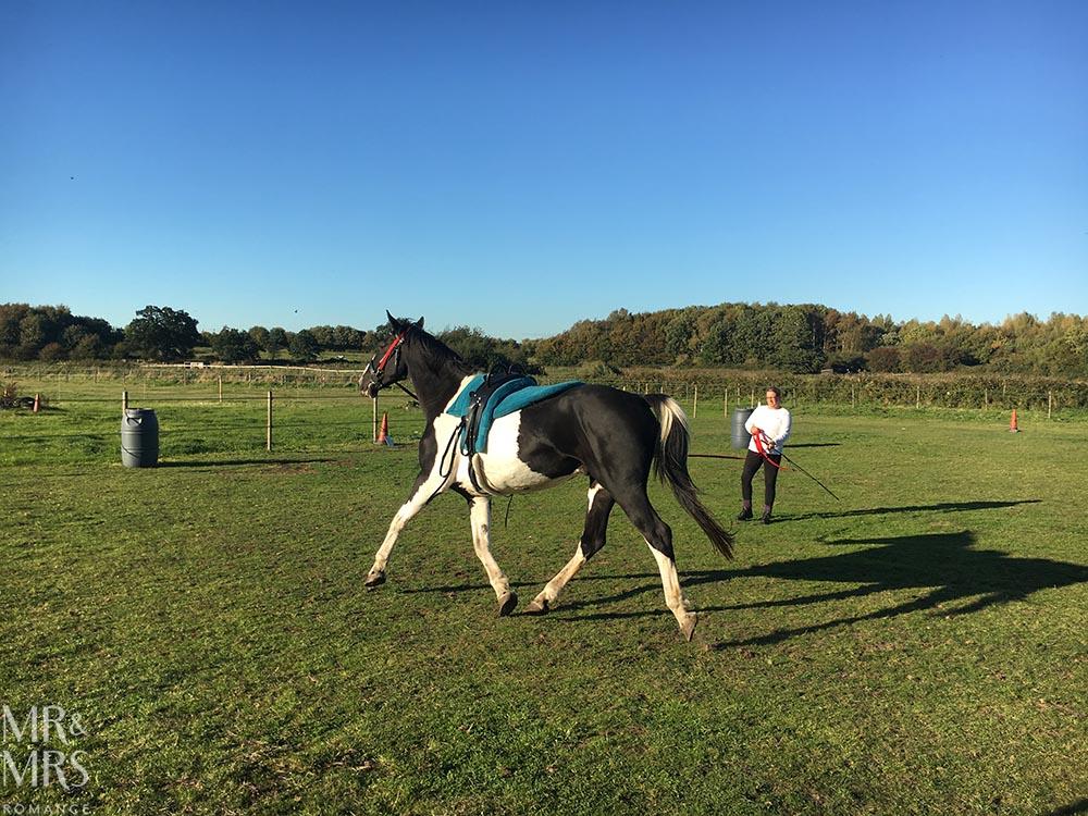 Norfolk, Suffolk, Sussex, Essex - horse riding