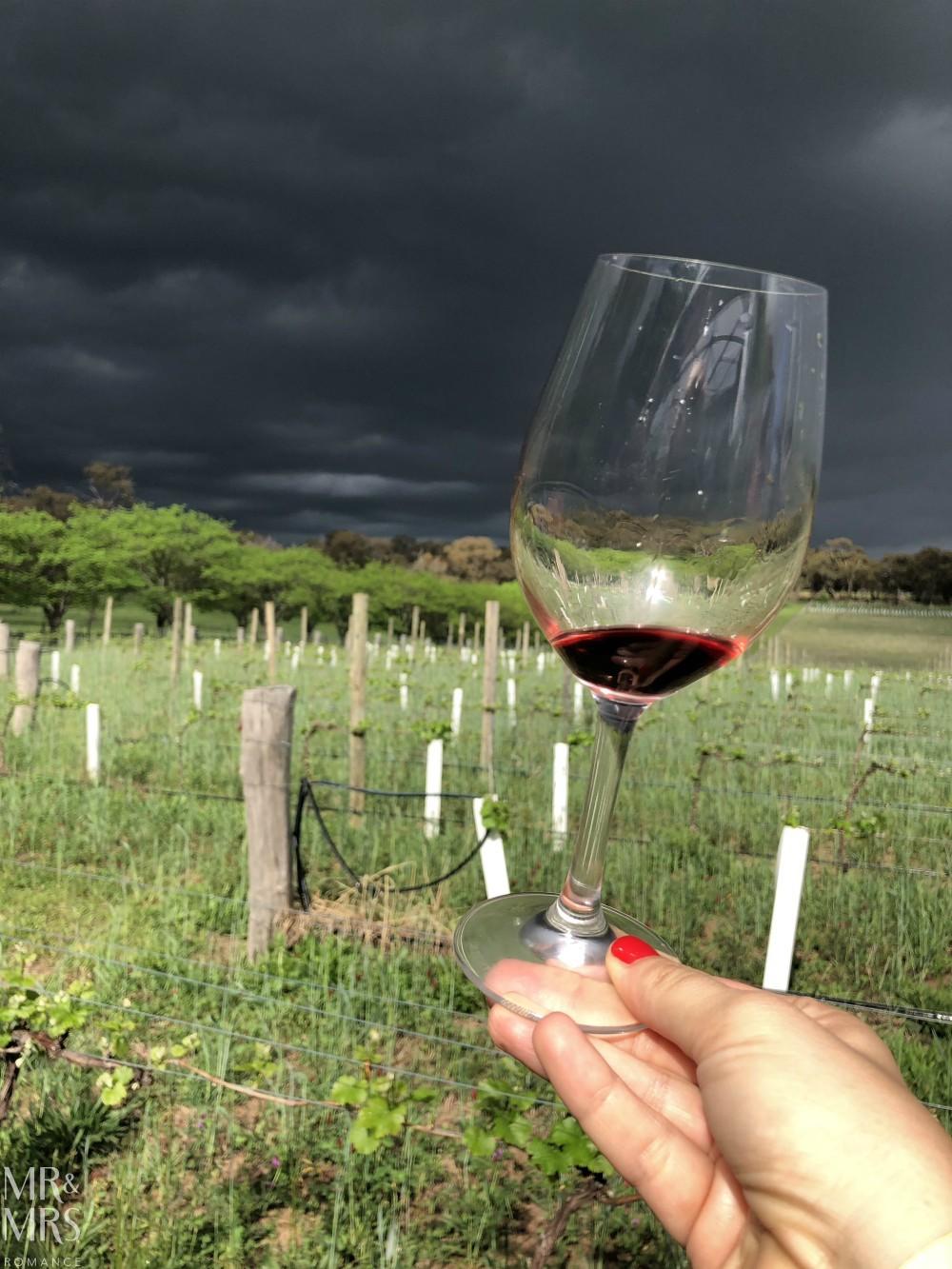 Orange Wine Festival - Stockman's Ridge storm in a wineglass