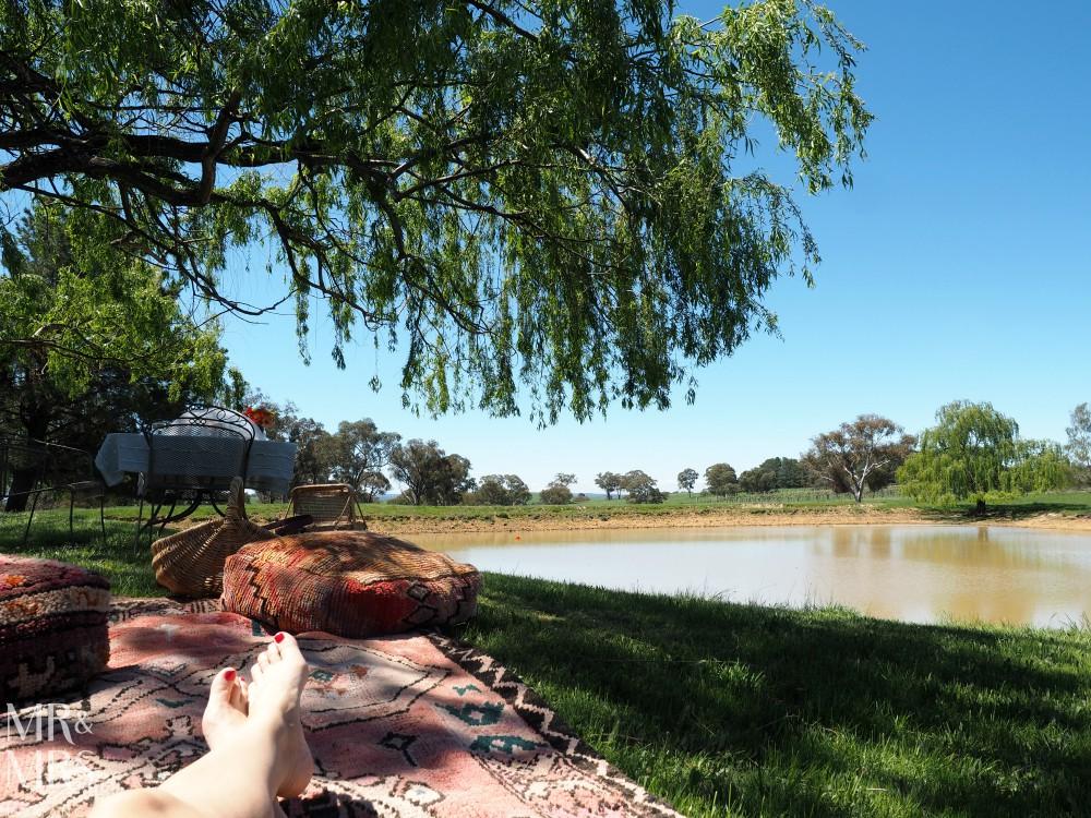 Orange Wine Festival - Heifer Station relaxing romantic picnic