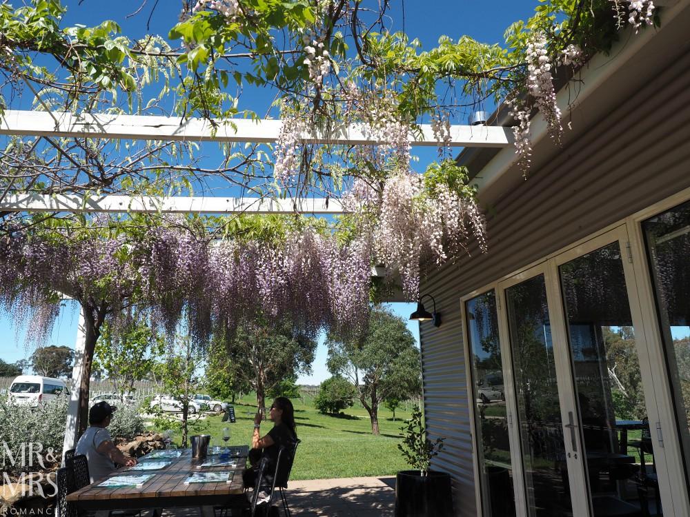 Orange Wine Festival - Swinging Bridge flowers