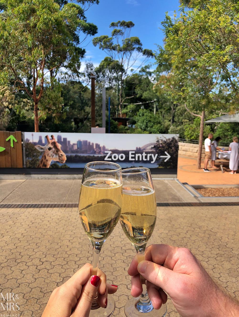 Taronga Zoo - cheers!