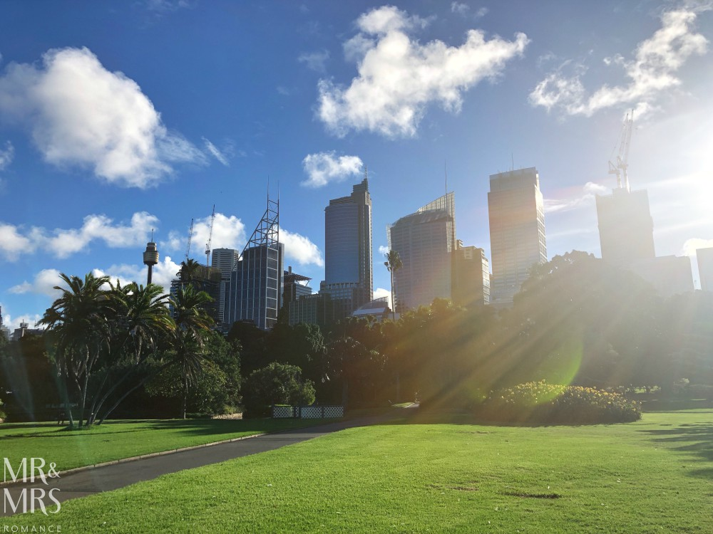 Sydney Royal Botanic Gardens and the city in the background